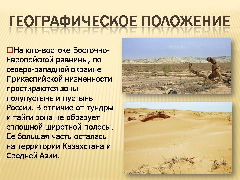 Пустыни и полупустыни Презентации по географии Слайд 1 Слайд 2