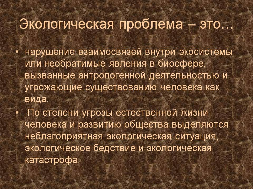 Экологические проблемы современной России и пути их решения   Слайд 4