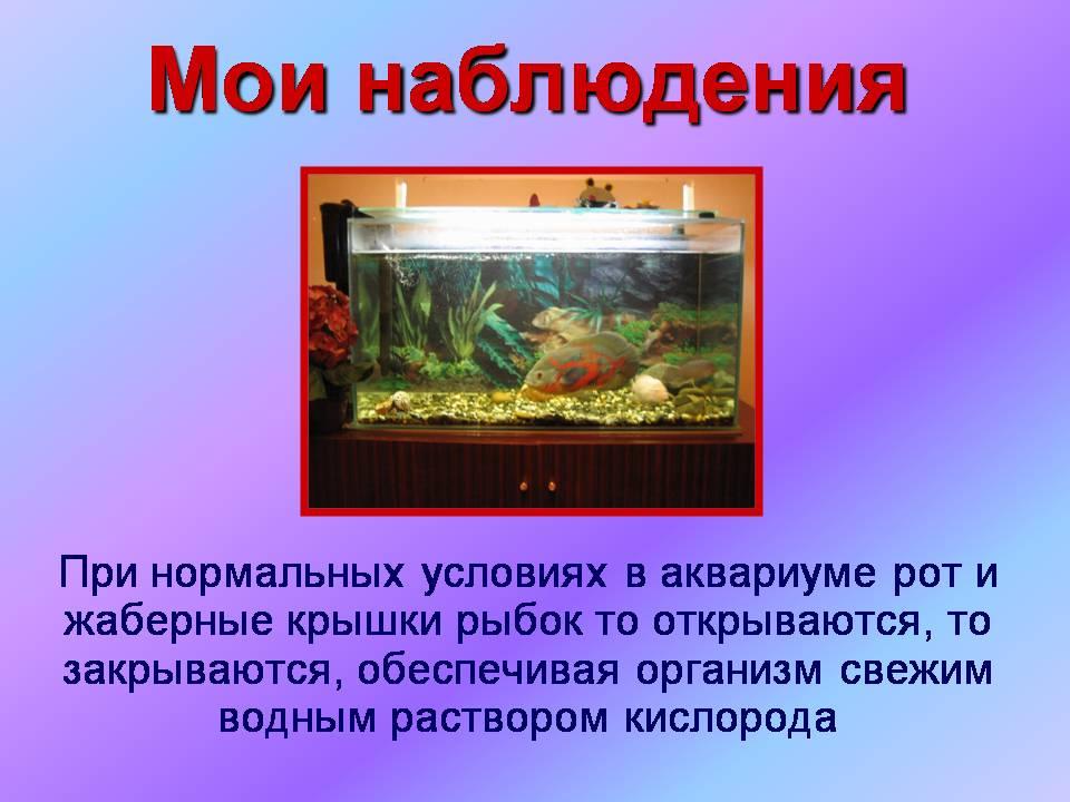 Запись в поликлинику на спортивной в красноярске