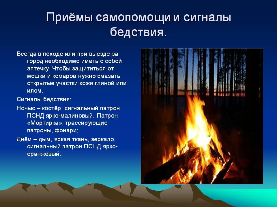 Как Ориентироваться В Лесу Презентация