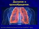 Дыхание и кровообращение (3 класс)