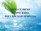 Озеро Селигер – жемчужина российской природы