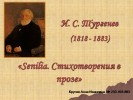 «Senilia. Стихотворения в прозе» И. С. Тургенев