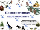 Помоги птицам перезимовать