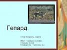 Гепард (4 класс)