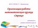 Организация работы математического кружка