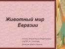 Животный мир Евразии