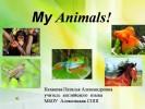 Animals (2 класс)