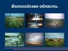 Почвы Вологодской области