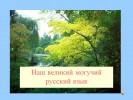 Наш великий могучий русский язык
