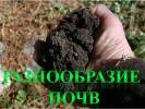 Разнообразие почв