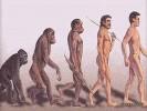 Первобытный мир-первые шаги человечества (4 класс)
