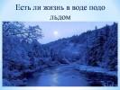 Есть ли жизнь в воде подо льдом?